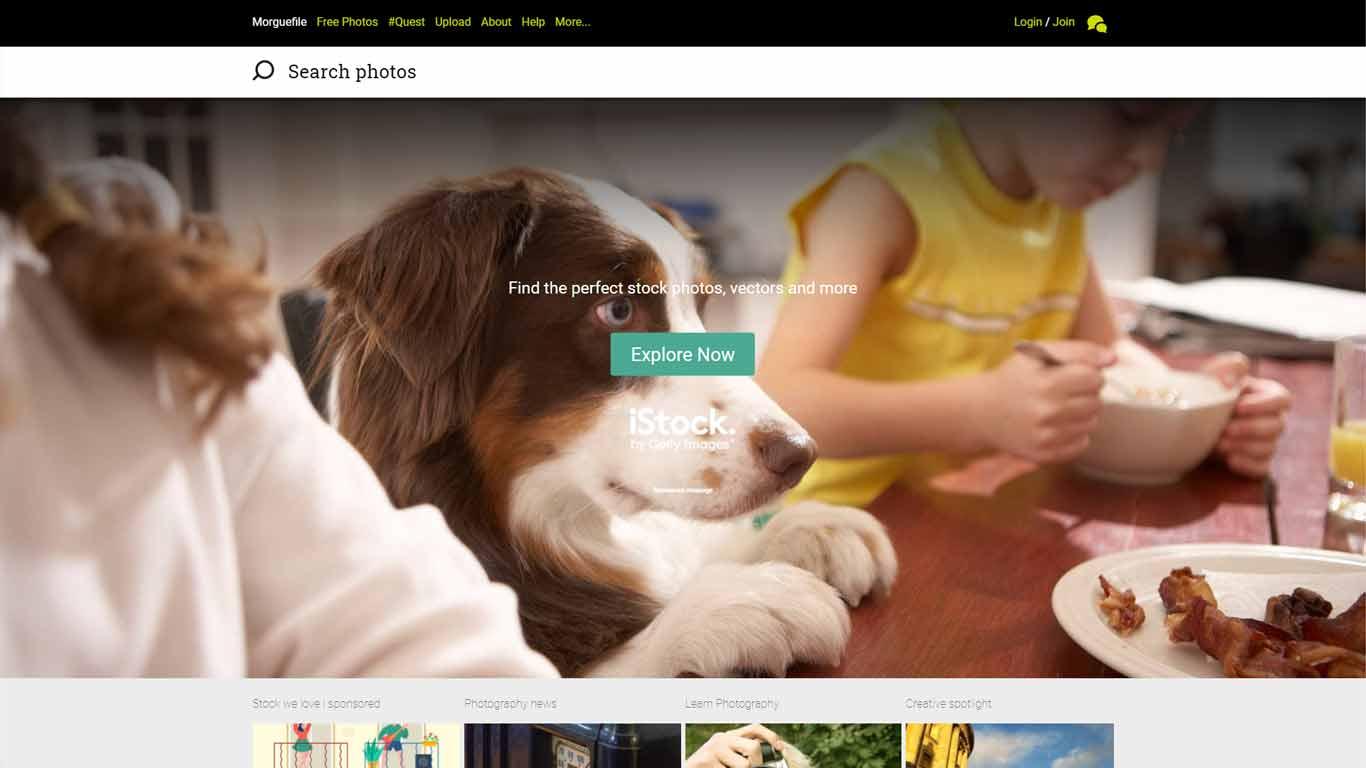 homepage di morguefile sito di immagini senza copyright